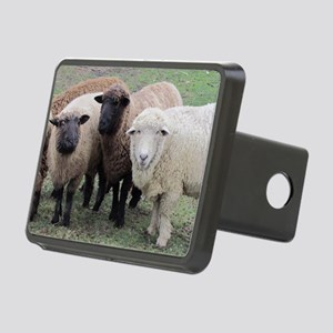 3 Sheep at Wachusett Rectangular Hitch Cover
