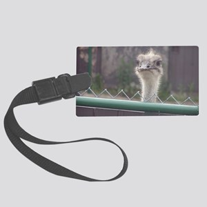 Ostrich Large Luggage Tag