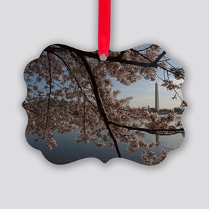 DSC_0029-4 Picture Ornament