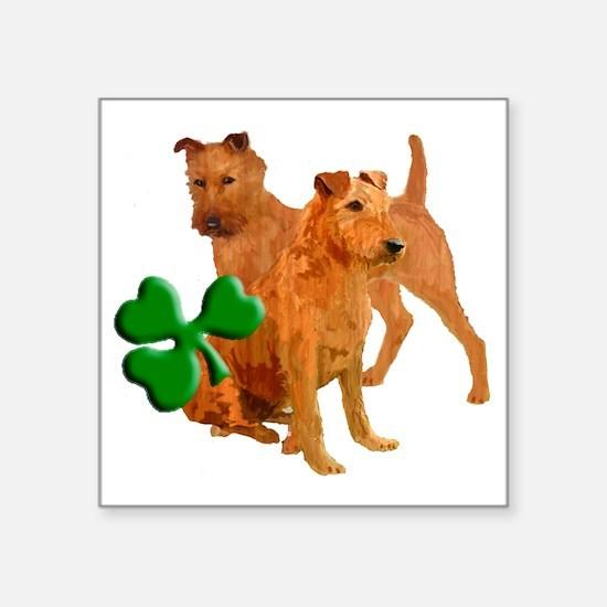 "irish terriers with shamroc Square Sticker 3"" x 3"""