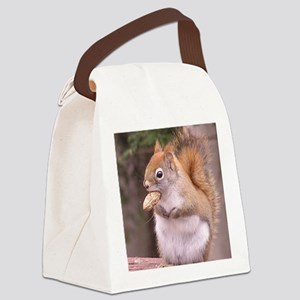 squirreleating Canvas Lunch Bag