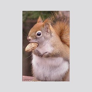 squirreleating Rectangle Magnet