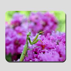 Puzzle Preying Mantis Mousepad