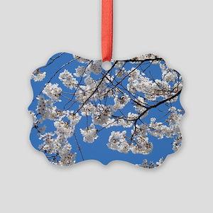 Cherry Blossom Peak Bloom Washing Picture Ornament