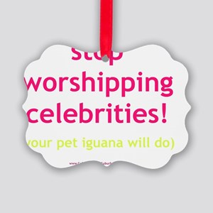 Stop Worshipping Celebrities Igua Picture Ornament