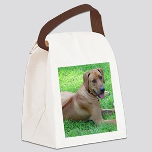 Dogforcafe Canvas Lunch Bag