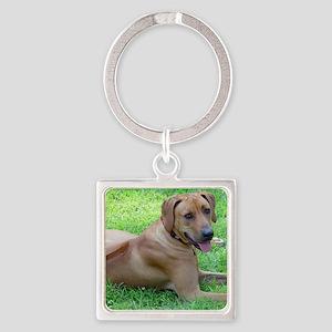 Dogforcafe Square Keychain