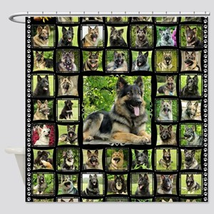blanket-brutus Shower Curtain