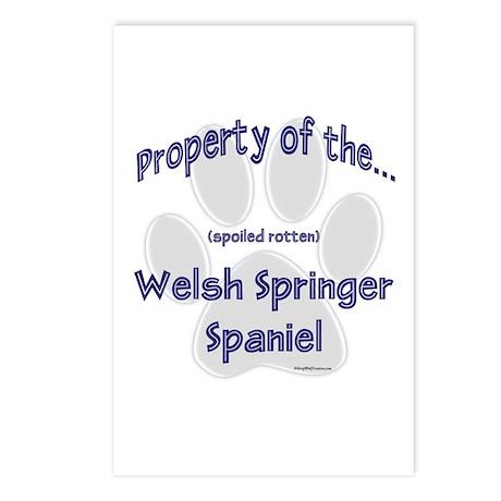 Welsh Springer Property Postcards (Package of 8)