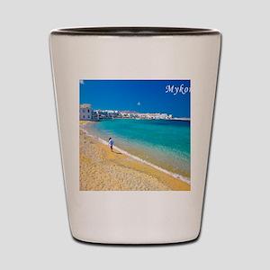 calander_0003__DSC0011-2 Shot Glass