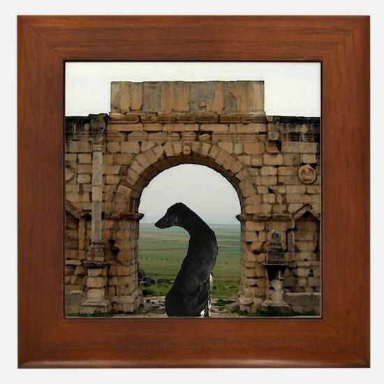Sloughi en Maroc Framed Tile
