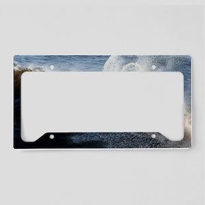 C9 License Plate Holder