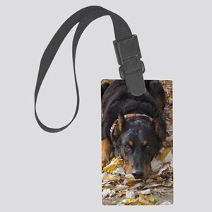 bayden09crouch Large Luggage Tag