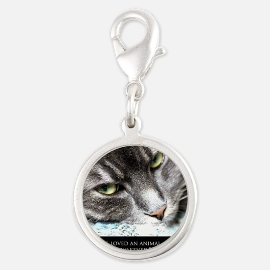 cat_soul_awakening_sq Silver Round Charm