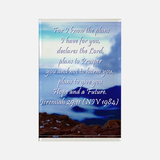 Jeremiah 29 11 Rectangle Magnet