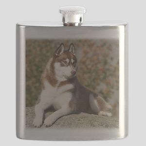 Siberian Husky 9Y773D-076 Flask