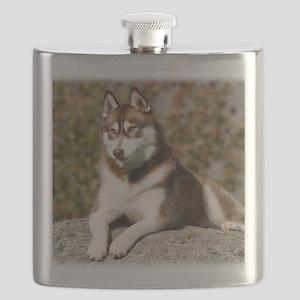 Siberian Husky 9Y773D-064 Flask
