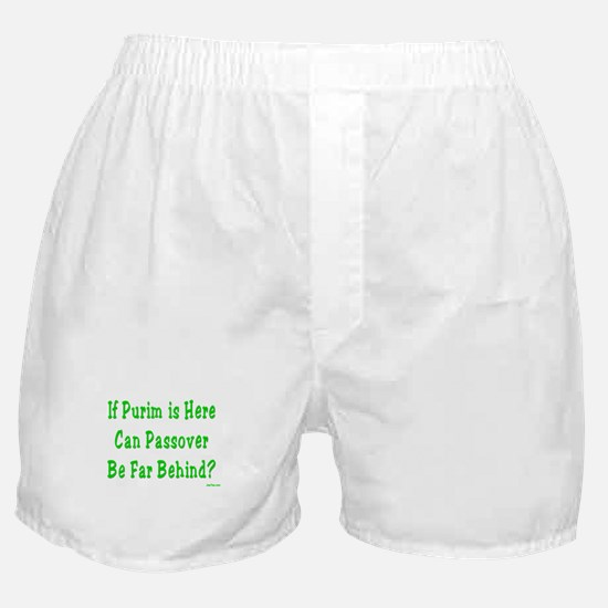 After Purim Comes Passover Boxer Shorts
