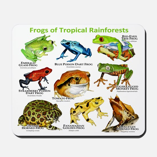 Frogs of the Tropical Rainforest Mousepad