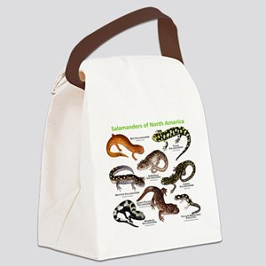Salamanders of North America Canvas Lunch Bag