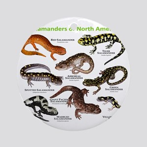 Salamanders of North America Round Ornament