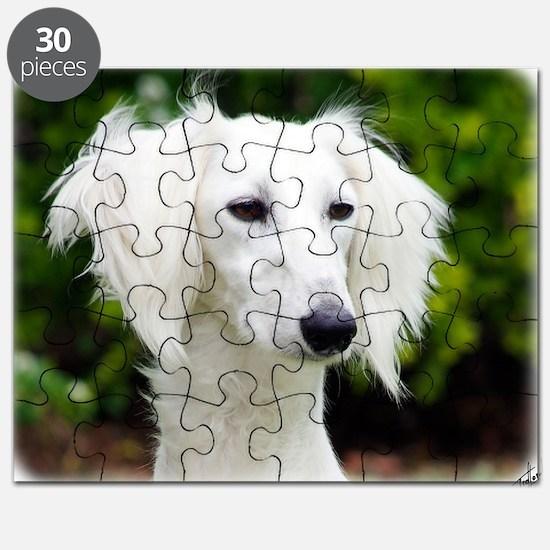 Saluki AC012D-020 Puzzle