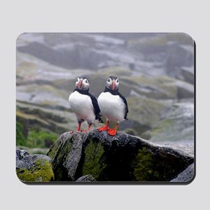 puffin twins Mousepad
