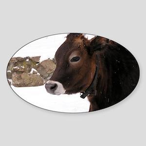 Lone cow Sticker (Oval)