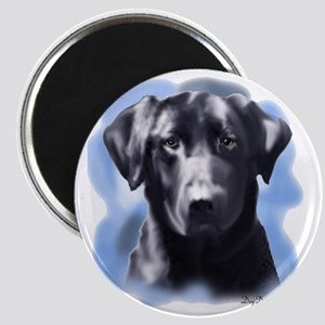 black lab portrait Magnet