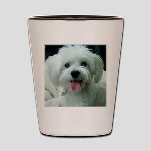 Sadie00 Shot Glass
