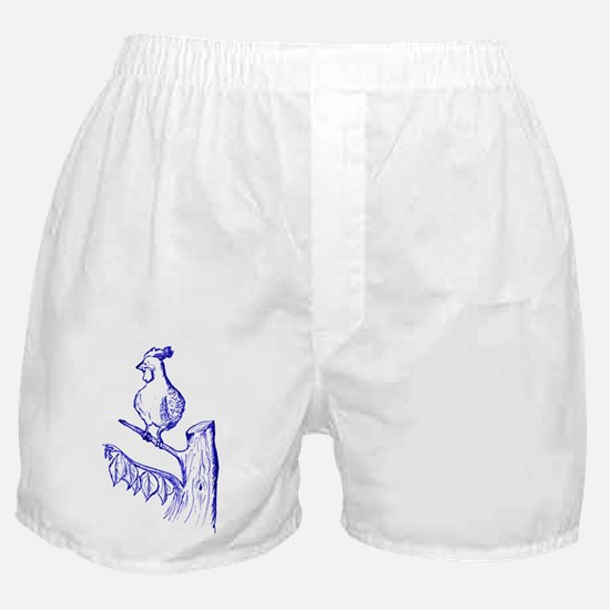 ToileRooster200dpi_9inW_Blue Boxer Shorts
