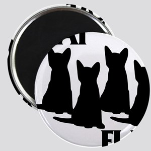 Cat Flag Magnet