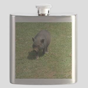 P8080125 Flask