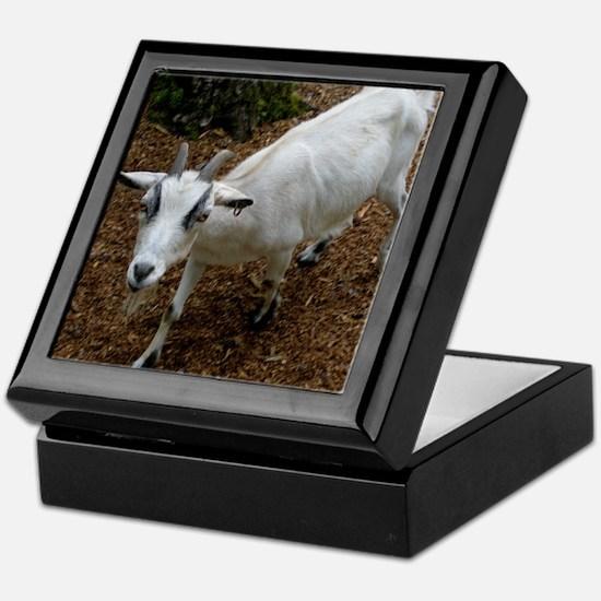 small goat Keepsake Box