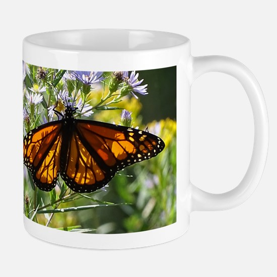 Monarch Catepillar Mugs