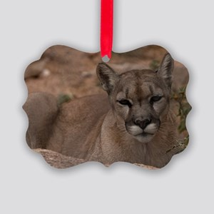 (3) Mountain Lion 1 Picture Ornament