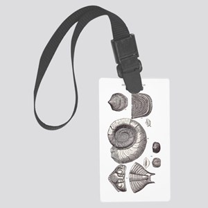 DEVONIAN FOSSILS Large Luggage Tag