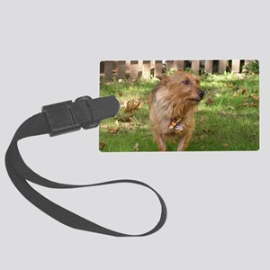 Australian Terrier Large Luggage Tag