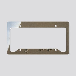 xo License Plate Holder