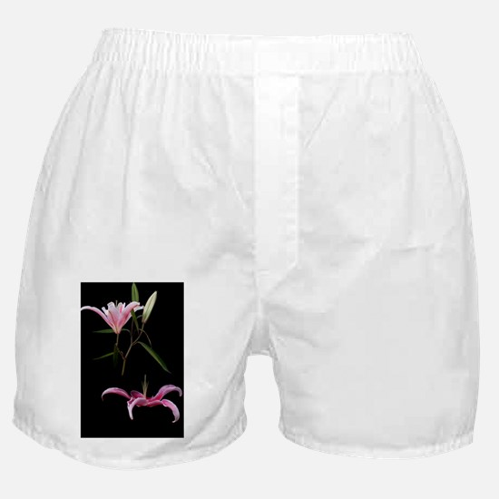Spring Elegance Boxer Shorts