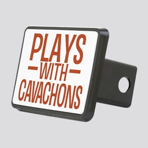 playscavachons Rectangular Hitch Cover