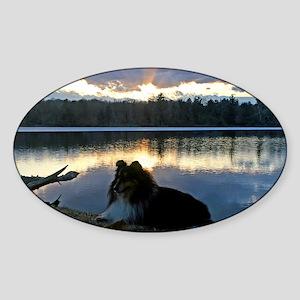 cafepress sissy lake final 5 x 7 Sticker (Oval)