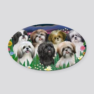7 Shih Tzus - by JF Oval Car Magnet
