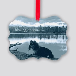 cafepress sissy lake final 5 x 7  Picture Ornament