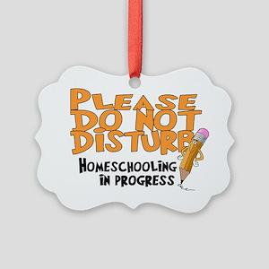homeschool23 Picture Ornament