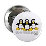 Burning Stare Penguins 2.25
