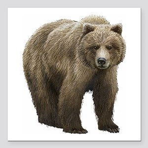 "Bear Square Car Magnet 3"" x 3"""