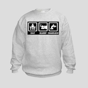 Eat Sleep Chameleon Sweatshirt