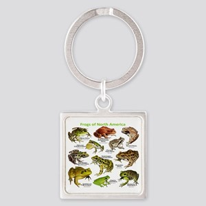 Frogs of North America Square Keychain