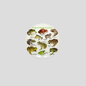 Frogs of North America Mini Button